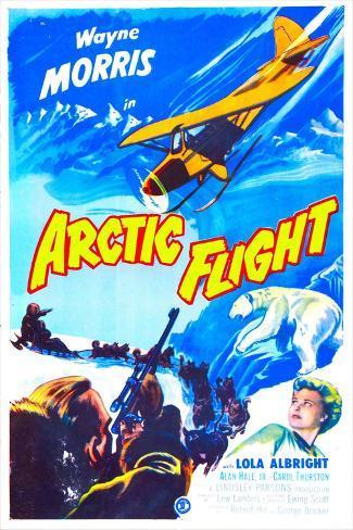 Arctic Flight Art Print