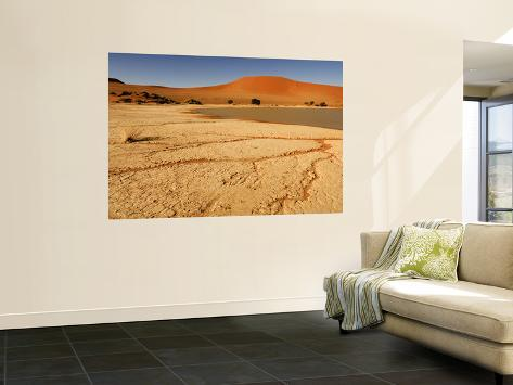 Sossusvlei Filled with Water after Exceptional Rains in 2006, Namib-Naukluft National Park Wall Mural