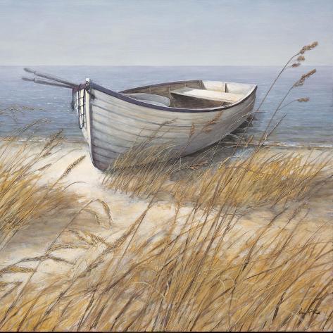 Barco en la costa Lámina