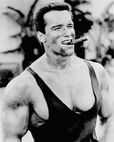 オールポスターズの arnold schwarzenegger cigar ポスター