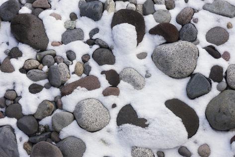Snow and Rocks, Mt Rainier National Park, Washington, USA Photographic Print