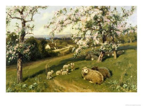 Spring Lambs Giclee Print