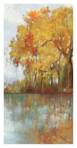 Forest Reflection I Art Print