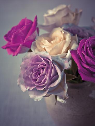 Vintage Rosa Giclée-vedos