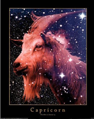 Astrology Horoscope (Capricorn) Mini Poster