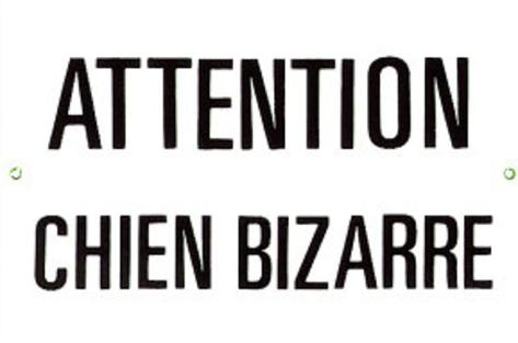 Attention Chien Bizarre Warning Strange Dog Tin Sign