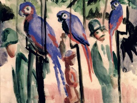 Blue Parrots Giclee Print