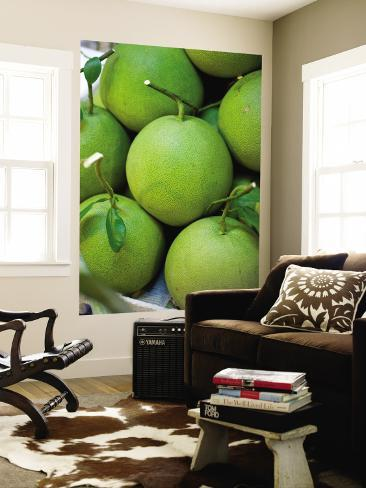 Pomelos for Sale at or Tor Kor Market Wall Mural