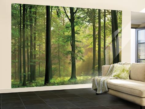 Autumn Forest Huge Wall Mural Art Print Poster Mural De Papel De Parede Part 24