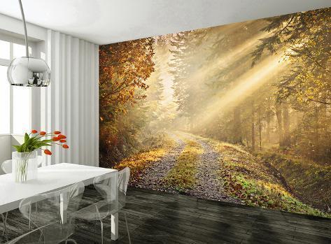 Autumn forest wallpaper mural wallpaper mural allposters for Autumn forest wallpaper mural