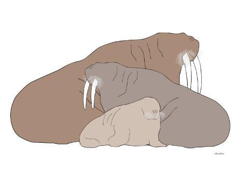 Brown Walrus Art Print