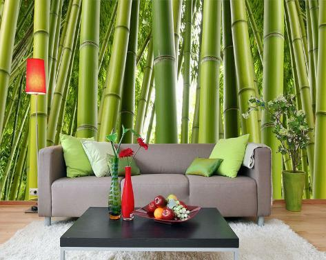 Bamboo forest wallpaper mural at for Bamboo forest mural wallpaper