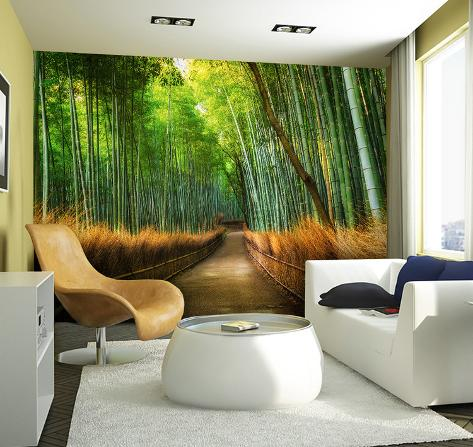 Bamboo path wall mural carta da parati decorativa su for Carte parati decorative