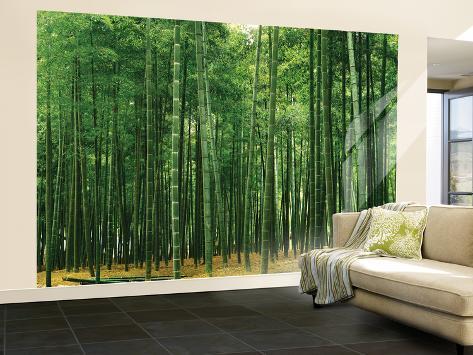 Bamboo Plantation Huge Wall Mural Poster Print Wallpaper Mural at