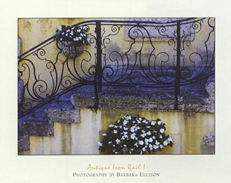 Antique Iron Rail I Art Print