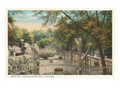 Bear Pit, Lincoln Park Zoo, Chicago, Illinois Art Print