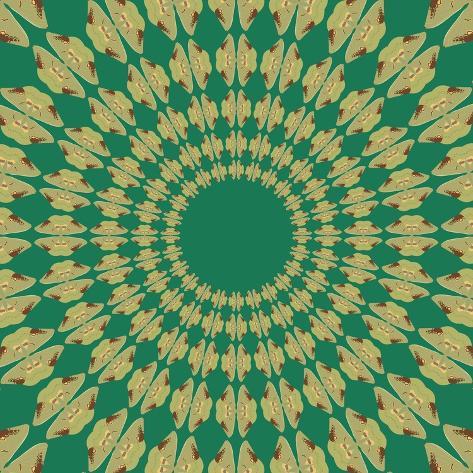 Moths Pachanga, Green Moth Giclee Print
