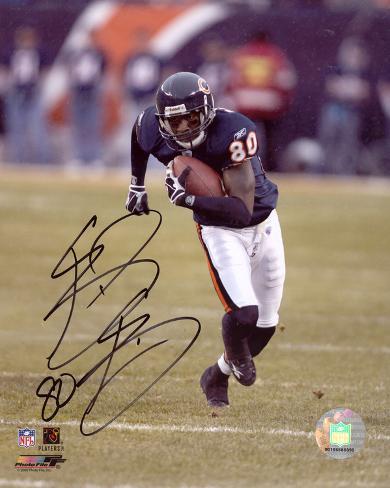 Bernard Berrian Chicago Bears Photo