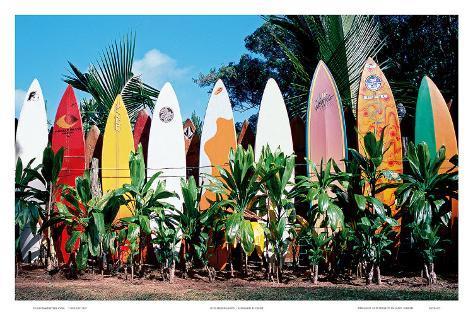 Old Surfboards Never Die, Hawaii Art Print