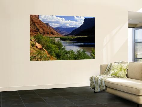 River Valley With View of Fisher Towers and La Sal Mountains, Utah, USA Wall Mural