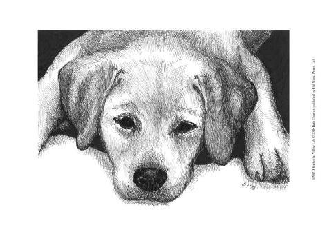 Kailie the Yellow Lab Art Print