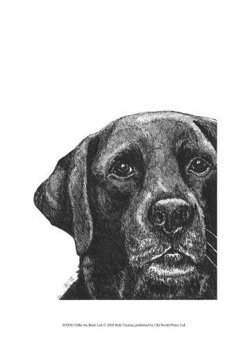 Millie the Black Lab Art Print