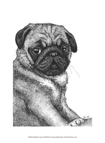 Ralph the Pug Framed Art Print