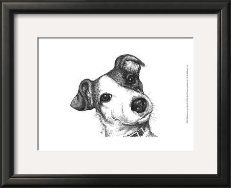 Robbie the Jack Russell Framed Art Print