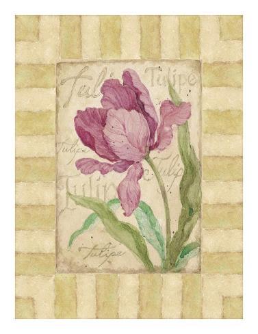 Belle Fleur III Art Print