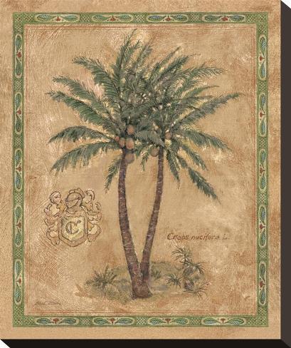 Cocos Nucifera Stretched Canvas Print