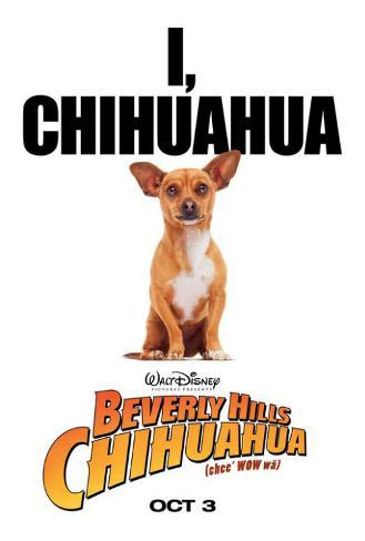 Beverly Hills Chihuahua Pôster