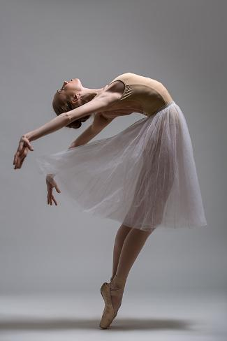 Graceful Ballerina Standing on Toes Bending the Back. Studio Shot. Photographic Print
