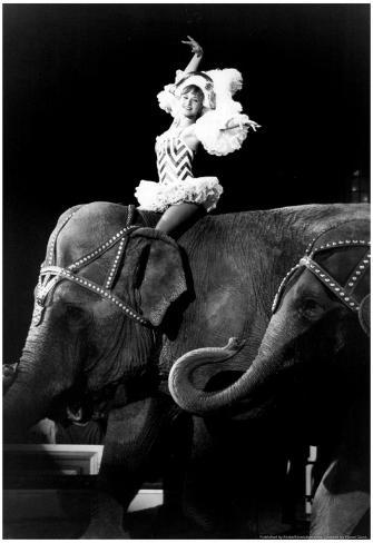 Big apple circus elephant rider archival photo poster