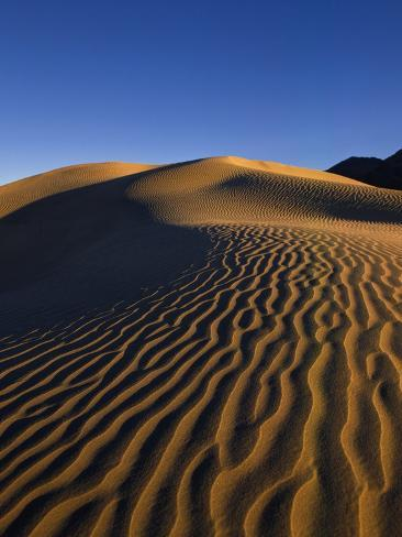 Sand Dunes in Death Valley Photographic Print