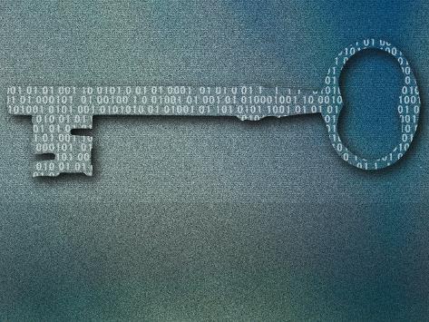 Binary Code on Skeleton Key Photographic Print