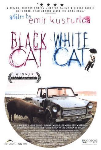 Black Cat, White Cat Poster