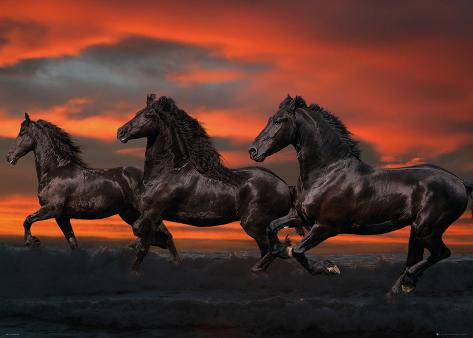 Bob Langrish: Fantasy Horses Giant Poster