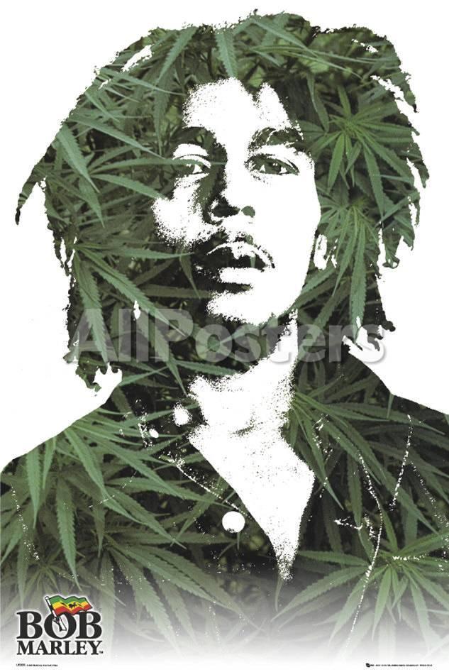 Bob Marley Póster en AllPosters.es