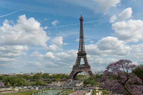Sunny Sunday at the Eiffel Tower Photographic Print