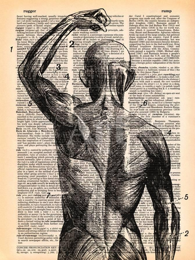 Superficial Muscles Arte por Book Dictionary Art en AllPosters.es