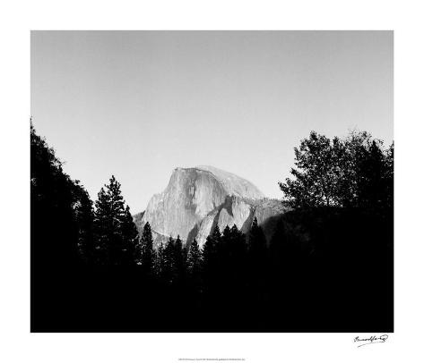 Half Dome in Trees Giclee Print