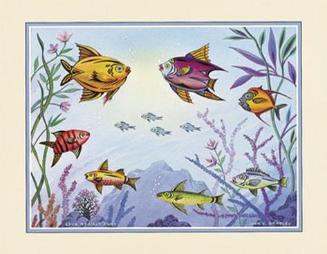 Fanciful Fish Art Print
