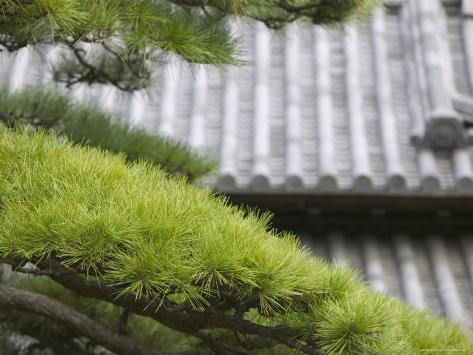 Tile Roof Top and Pines Inside the Otemon Gate to the Imperial Palace, Tokyo, Kanto, Japan Photographic Print