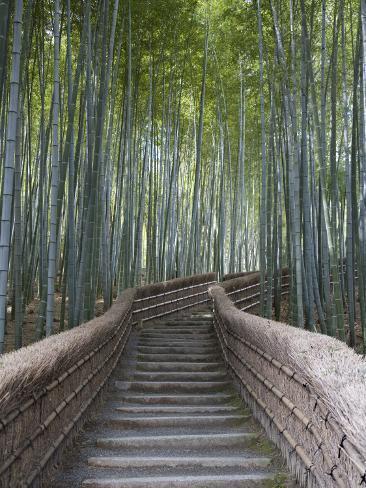 Trappa genom bambudunge ovanför templet Adashino Nembutsu-Ji Fotoprint
