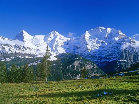 The eiger jungfrauand monch mountains impresso fotogrfica the eiger jungfrauand monch mountains impresso fotogrfica premium reheart Choice Image
