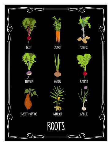 Garden Roots Taidevedos
