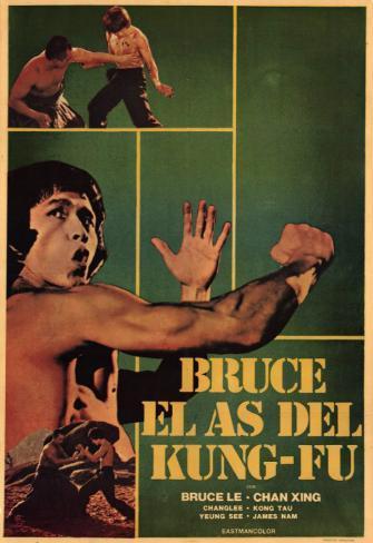 Bruce and Shao-lin Kung Fu Masterprint