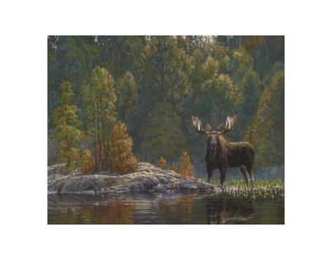 North Country Moose Art Print