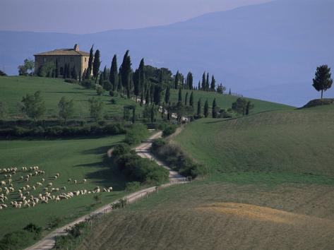House and Cypress Trees, Val d'Orcia, Siena Provice, Tuscany, Italy Photographic Print
