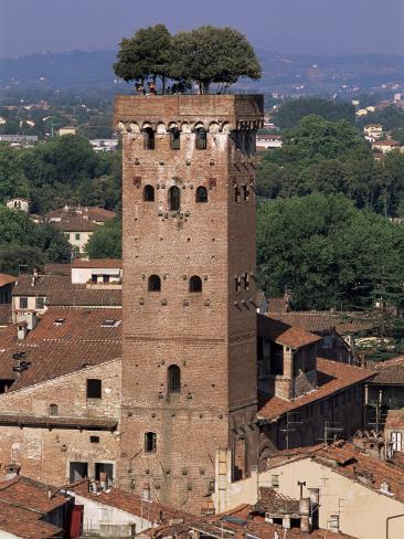 Tour Des Guinigi, Lucca, Tuscany, Italy Stampa fotografica